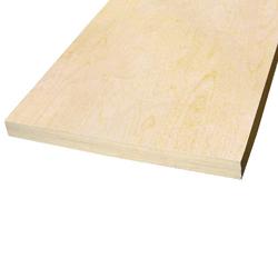 Baltic Birch Plywood 3 4 X2 X2